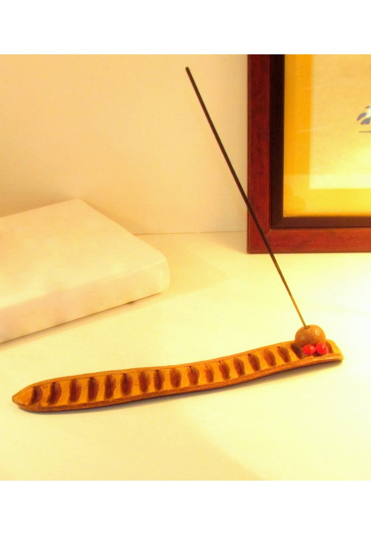 Seed and Shell Incense Stick Holder
